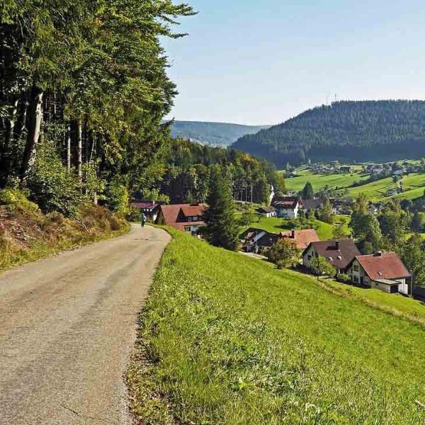 """Start der Kommission für gleichwertige Lebensverhältnisse/Fraktionskongress """"Heimat mit Zukunft – für starke ländliche Regionen"""""""
