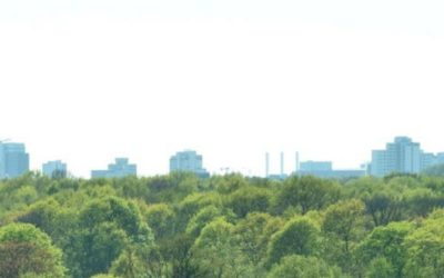 """""""Zukunft Stadtgrün"""" und """"Soziale Stadt"""": 3,2 Millionen Euro für Nürnberg und Schwabach"""